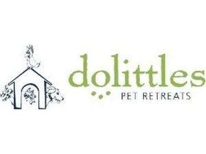 Dolittles Pet Retreat - Pet services