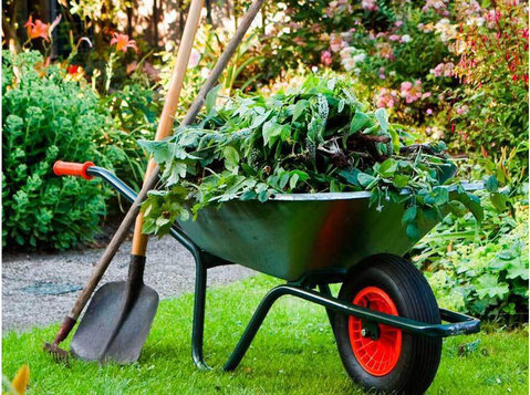 Lawn Mowing South Maclean - Gardeners & Landscaping