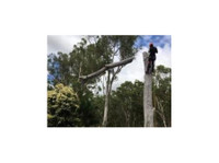 Community Tree Services (2) - Gardeners & Landscaping