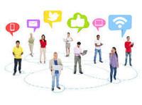 Blue Bee Social - Online Marketing Services Gold Coast (4) - Marketing & PR