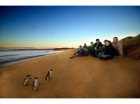 Wildlife Tours Australia (3) - Travel sites