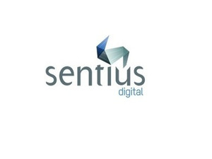 Sentius Digital - Online Marketing Agency - Marketing & PR