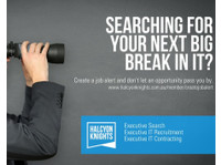 Halcyon Knights - Executive Search and IT Recruitment (1) - Recruitment agencies