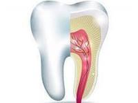 Narre Warren Dental Care (4) - Dentists