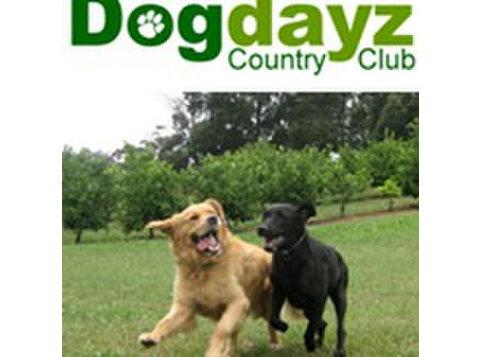 Dogdayz Country Clubs - Lemmikkieläinpalvelut