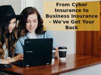 Indagard Insurance Services (1) - Insurance companies