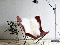 Curious Grace (1) - Furniture