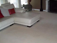 Upholstery Cleaning Melbourne (2) - Cleaners & Cleaning services