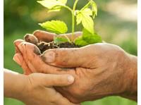 Elders Financial Planning Geelong (1) - Financial consultants