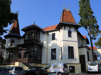 The American International School · Vienna (2) - International schools