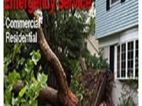 tree service New York long island (1) - Home & Garden Services