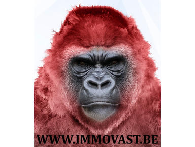 Immovast.be - Onroerend goed sites