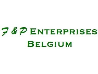 F&P Enterprises Belgium - Consultancy