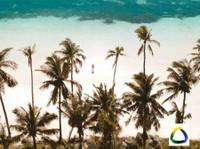 Brazilecotour (2) - Agences de Voyage