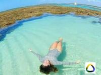 Brazilecotour (6) - Agences de Voyage