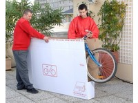 AGS Sofia (3) - Removals & Transport