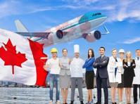 101migration (2) - امیگریشن سروسز