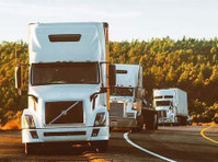 Ridgewood International Freight Inc (5) - Import/Export