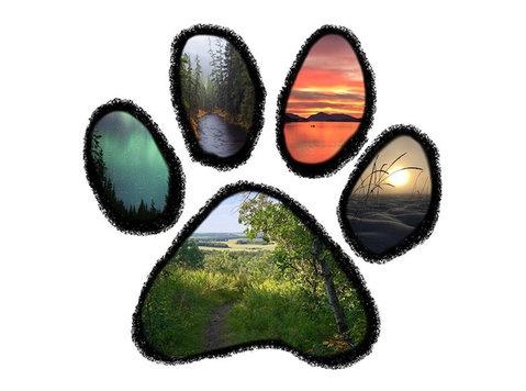 Grasslands Canine Development Centre - Pet services