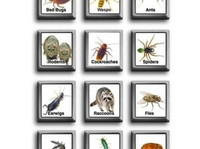 Reliable Pest Control (1) - Cleaners & Cleaning services