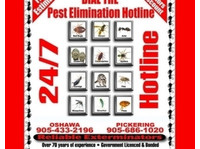 Reliable Pest Control (2) - Cleaners & Cleaning services