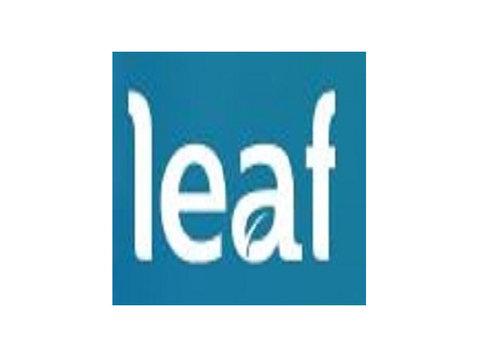 Leaf Design - Webdesign