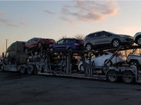 Professional Car Carriers (1) - Car Transportation