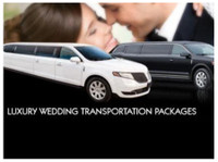 Black Tie Executive Limo (1) - Car Rentals