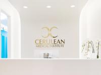 Cerulean Medical Institute (1) - Cosmetic surgery