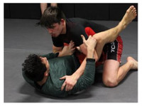 Ascendant Martial Arts (3) - Games & Sports