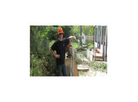Van Till Tree Care (2) - Gardeners & Landscaping