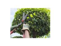 Edmonton Arborists (2) - Home & Garden Services