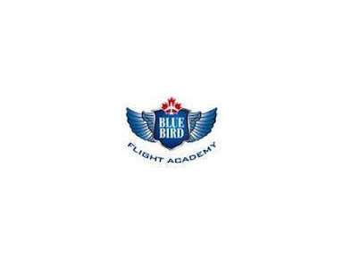 Blue bird flight academy - Coaching & Training