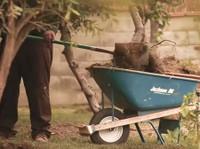 Langley Landscaping Guys (3) - Gardeners & Landscaping