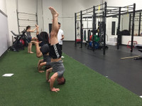 True North Strength and Fitness (3) - Gyms, Personal Trainers & Fitness Classes