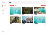 Pilot (2) - Travel sites