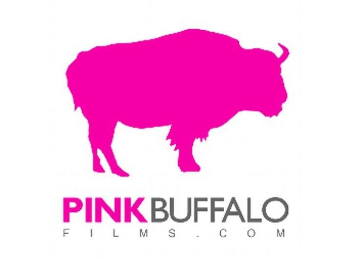 Pink Buffalo Films - Video Production, Digital Marketing - Movies, Cinemas & Films