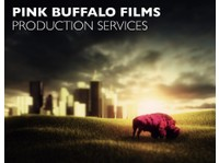 Pink Buffalo Films - Video Production, Digital Marketing (4) - Movies, Cinemas & Films
