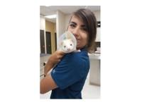 Sage Creek Animal Hospital (2) - Pet services