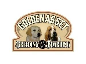 Goldenasset Kennel - Pet services