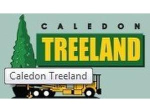 Caledon Treeland - Gardeners & Landscaping