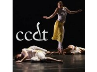 The School of Canadian Contemporary Dance Theatre (1) - Coaching & Training