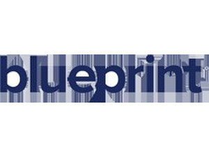 Blueprint Software Systems - Business & Networking