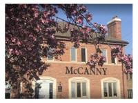 McCanny Secondary School (1) - International schools