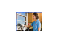 Window Cleaning Services Mississauga - Clean4me (1) - Cleaners & Cleaning services