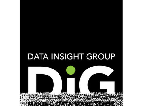Data Insight Group Inc. (DiG) - Consultancy