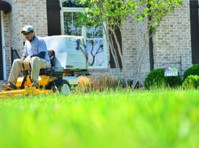 Eden landscaping and Snow Removal (2) - Gardeners & Landscaping