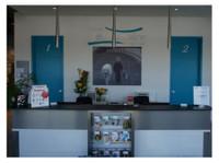 Clinique Vétérinaire Bellefeuille (1) - Pet services