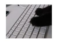 BlackcatSEO Inc. (1) - Advertising Agencies