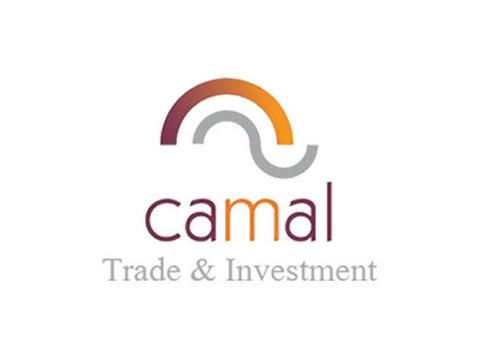 Camal - Financial consultants